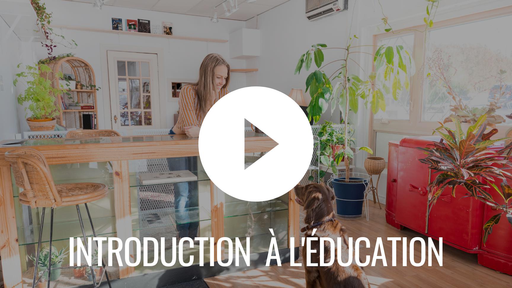 Introduction à l'éducation - Préparation à l'entraînement - Le Chien Coureur